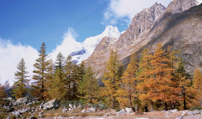 аляска, природа, montañas, лагос, des, plus, лес, mountains,
