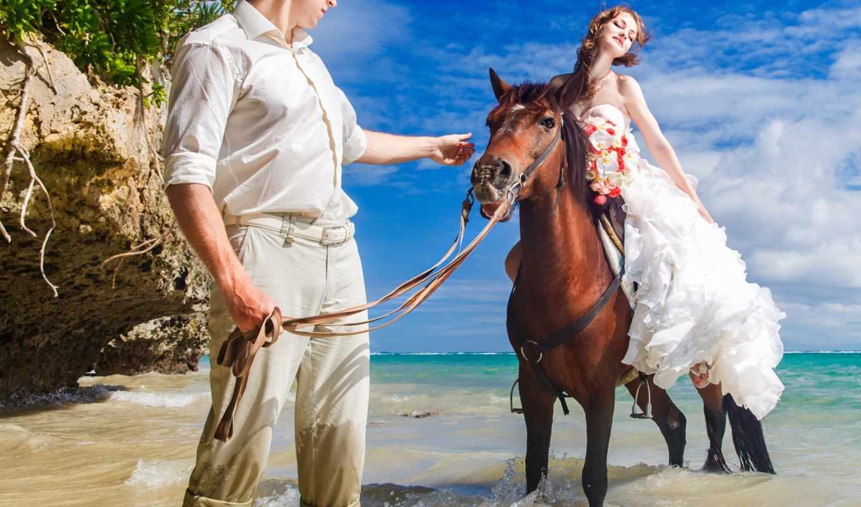 девушка, лошадь, парень, море, пляж, невеста, лошади, графики, всадник,
