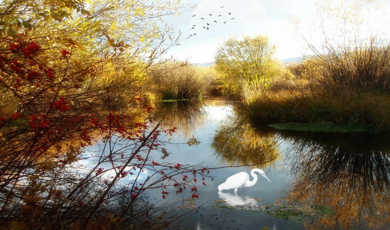 haber, природа, kozan, resim, nature, می, تصاویر, با, картинка, doğa, resimleri, other, озеро, در, дата, reflection,