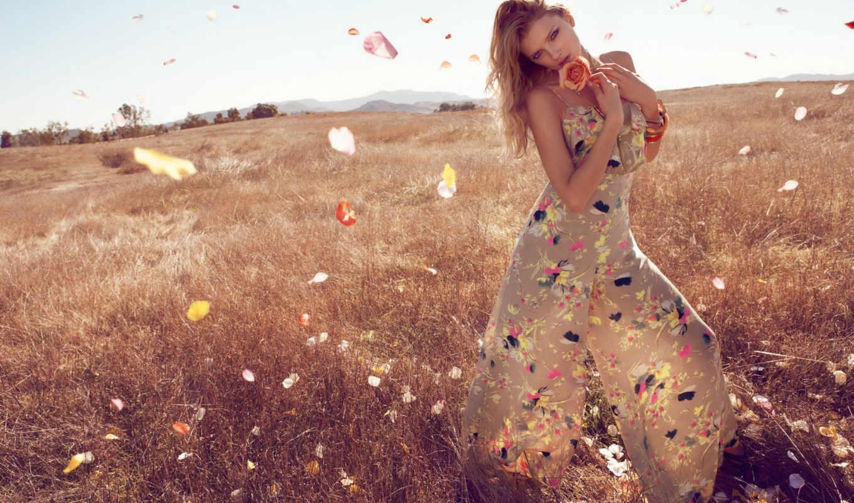donaldson, lily, лепестки, взгляд, цветок, блондинка, картинка, monsoon, tags, поле,