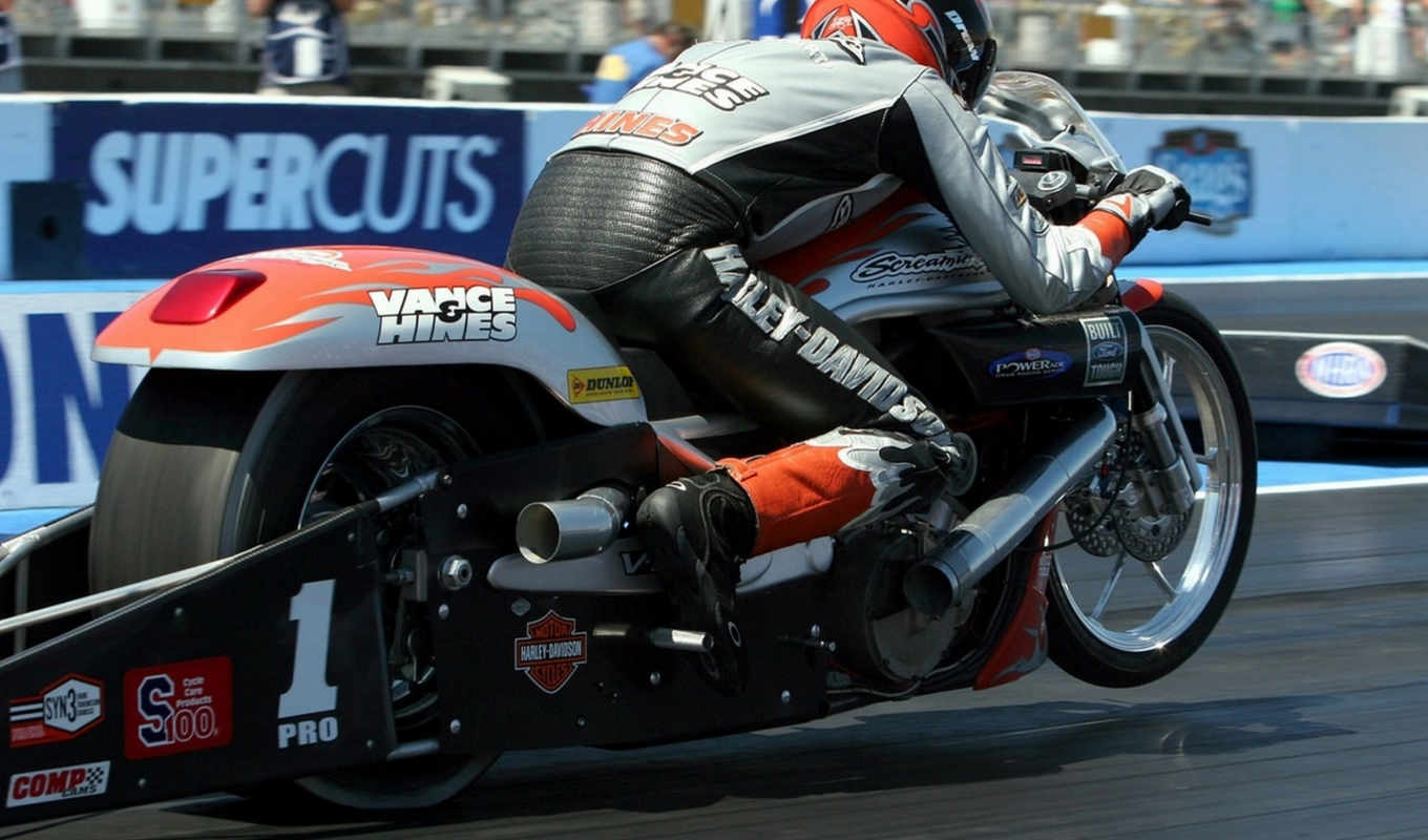 nhra, мото, орлан, screamin, dragster, davidson, harley, мотоцикл,