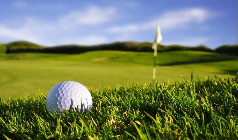 golf, similar, sport, hole, ball,