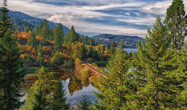 красивые, природы, супер, paisagem, от, pack, floresta,