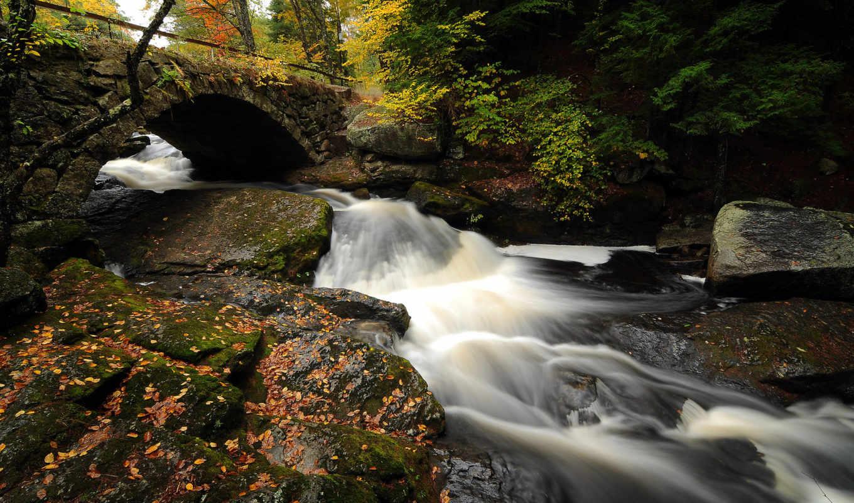 water, ручей, река, лес, дек, красивые, небо, поток, янв,