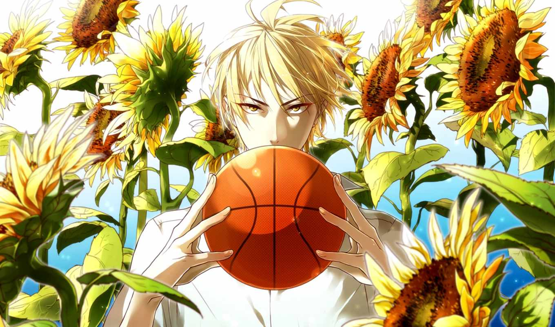 куроко, баскетбол, anime, momoi, satsuki, корзина, art,