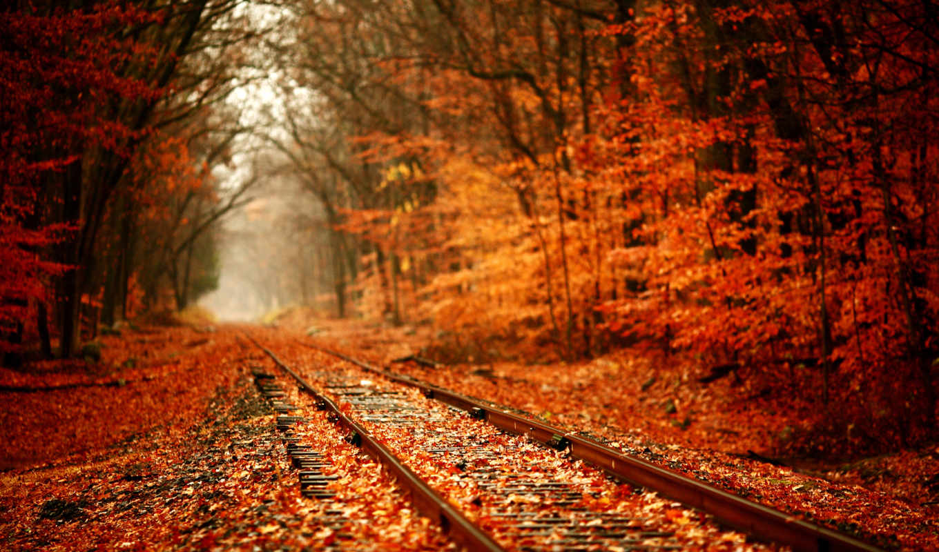 , railroad, landscape,