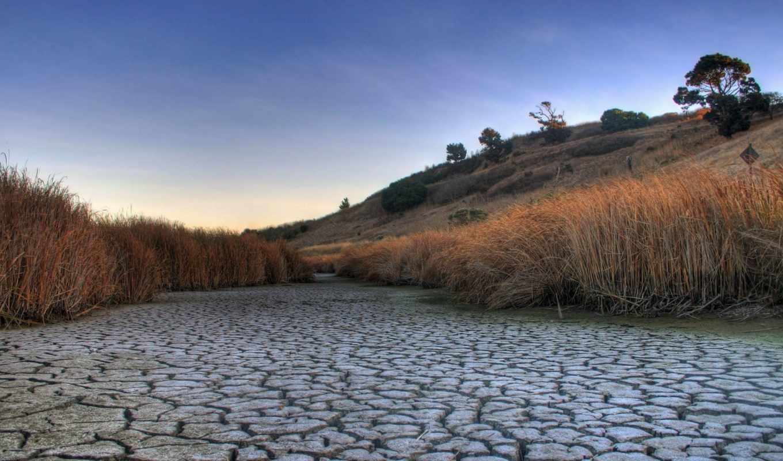 русло, реки, пересохшее, земля, засуха, природа, трава, картинка, высохшее,