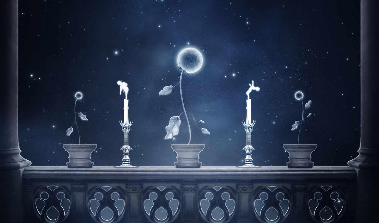цветы, flowers, луна, луне, are, лунно,