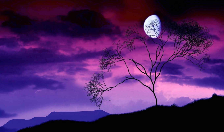 небо, луна, ночь, взгляд, ночное, sri, января, найти, день, руб,