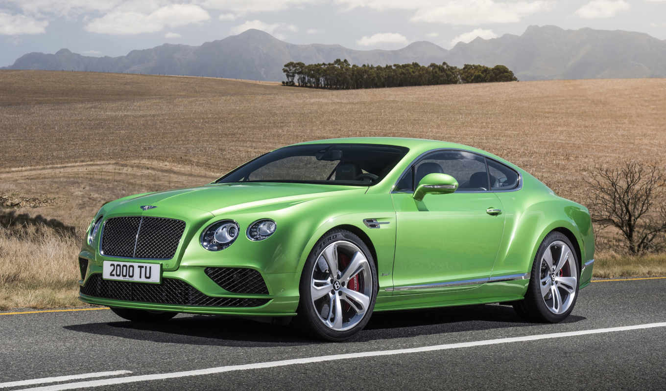 bentley, continental, скорость, new,