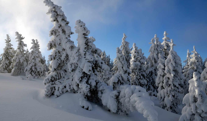 paisajes, hdtv, снег, imágenes,