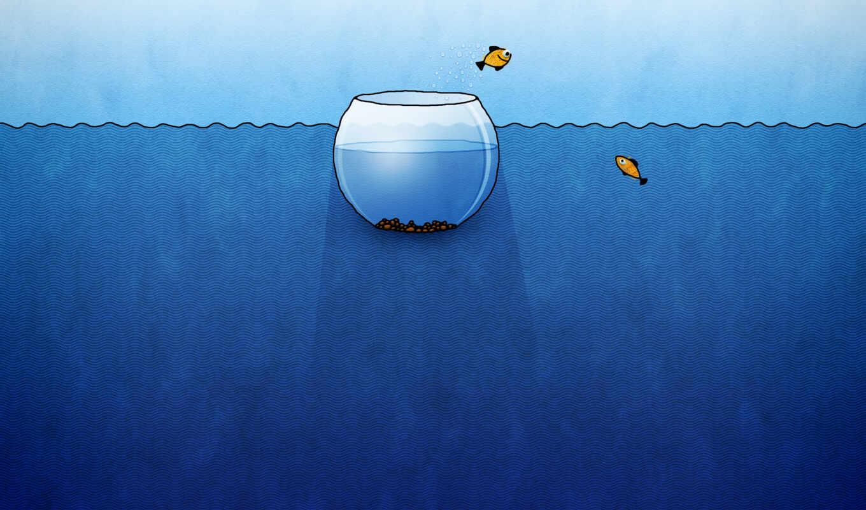 аквариум, рыбы, рисунок, смешные, рыбки, breitling, вода,