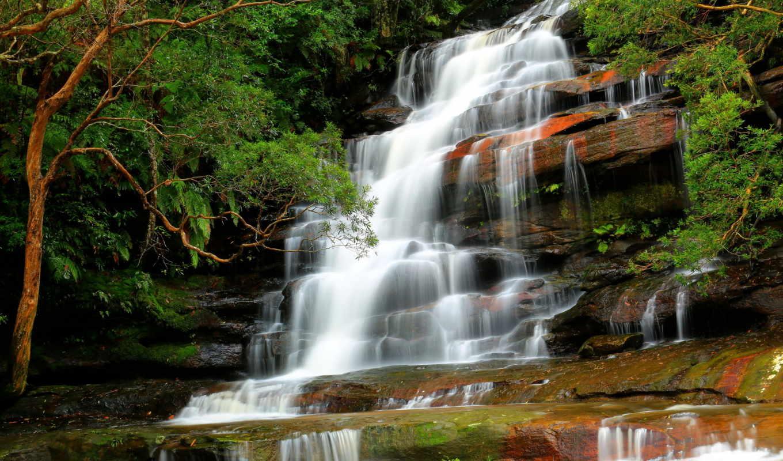 природа, водопад, река, лес, деревя, картинка,
