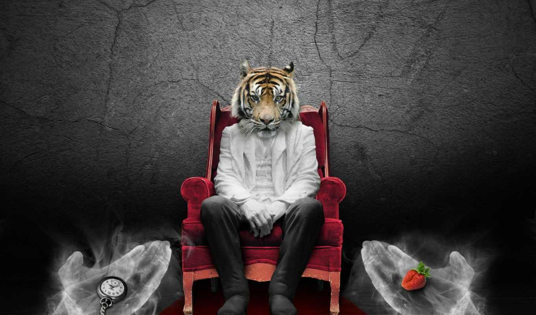 тигр, art, мужчина, watch, ягода, home, digital, голова, size, кресло, плакат,