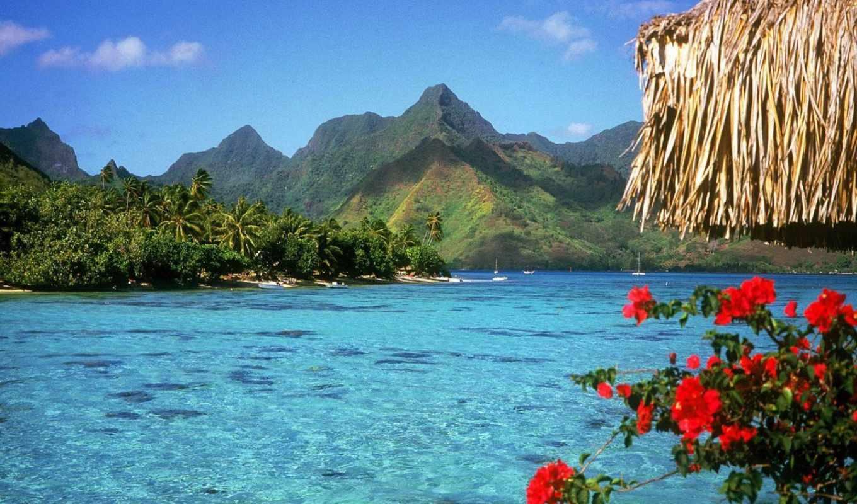 природа, красивые, море, summer, фотографий,