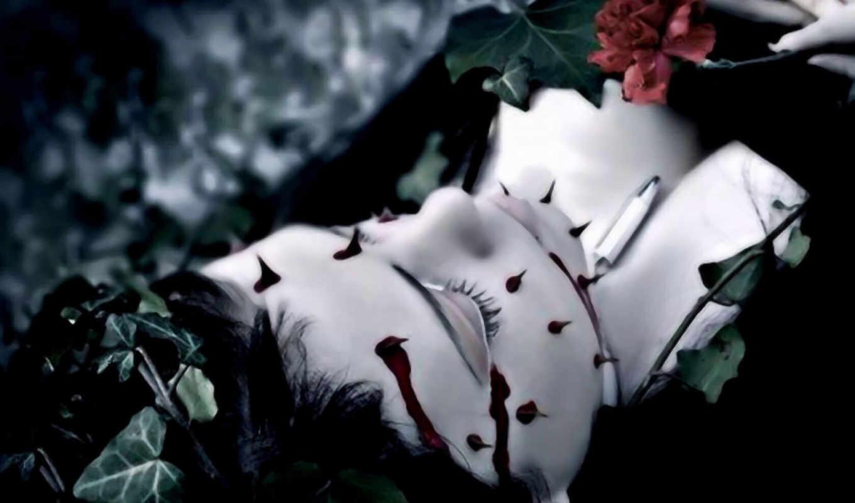 розы, кровь, темы, roza, черная, рисунки, devushki, крови, глава, натюрморт, черной,