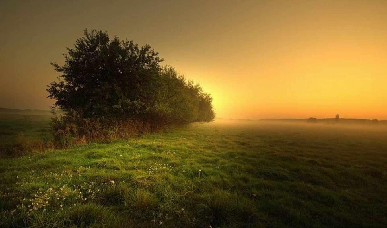 природа, ди, красивые, bella, immagini, natura, bellissima, divertenti, immaginidiverte,