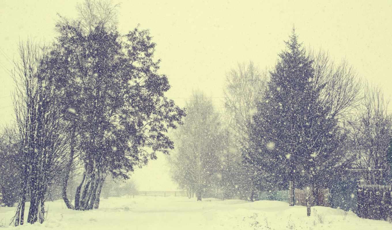снег, деревня, winter, trees, февр, desktop,