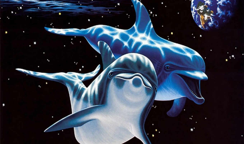 дельфины, под, автора, вышивки, названием, представлена, схема,