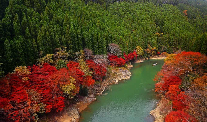 япония, kyoto, arashiyama, oi,