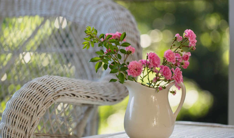 цветы, розы, кувшин, кресло, утро, природа, привет, розовые,