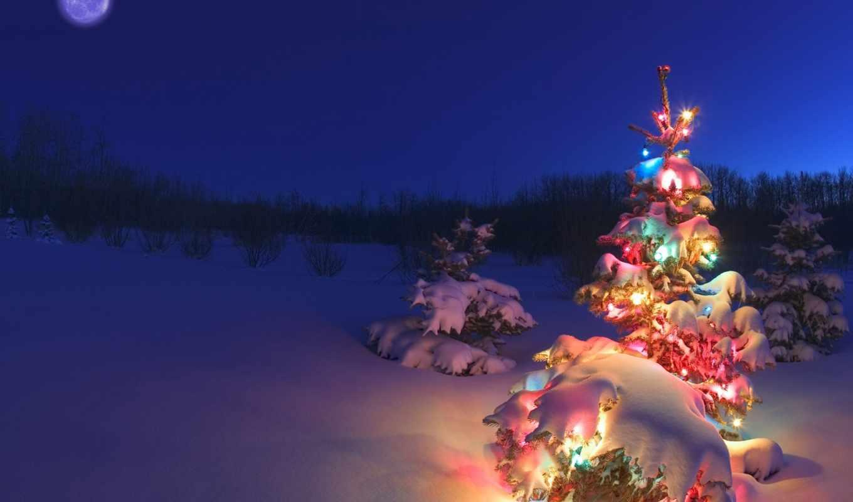 елка, christmas, новогодняя, desktop, hinh, holiday, снег, год, night, holidays, some, новый,