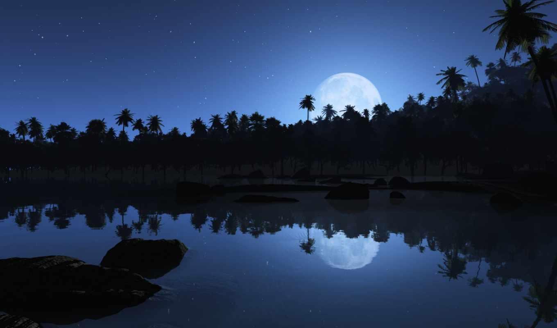 paysage, mallet, juliette, ecran, chopin, mode, nuit, follow,