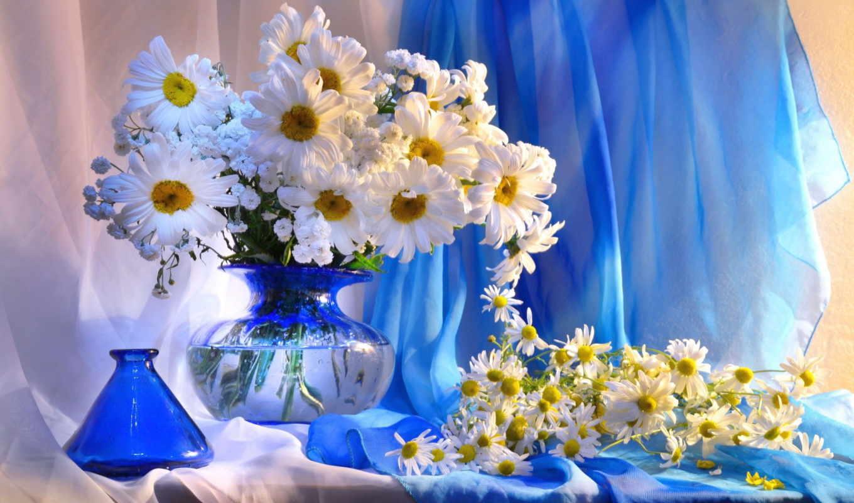 красивые, straza, рейтинг, пост, цветы,