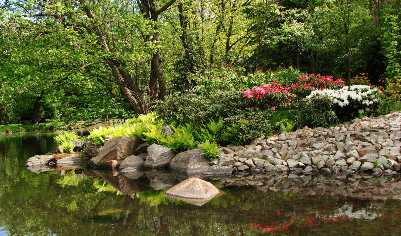 лес, камни, tapety, пруд, desktop, klomb, пейзаж, природа,