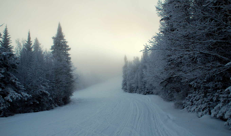winter, снег, есть, туман,