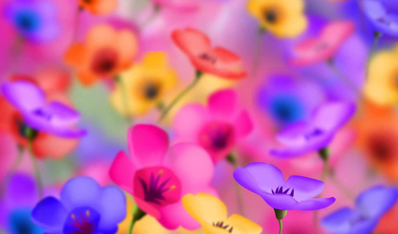 яркие, цветы, начало, февр, positive, красивый, entertainment,