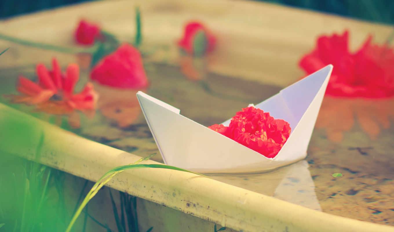 корабль, бумага, цветы, красные,