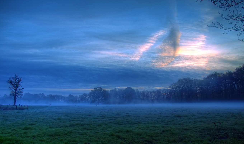 луг, природа, настроения, вечером, пейзажи, free,