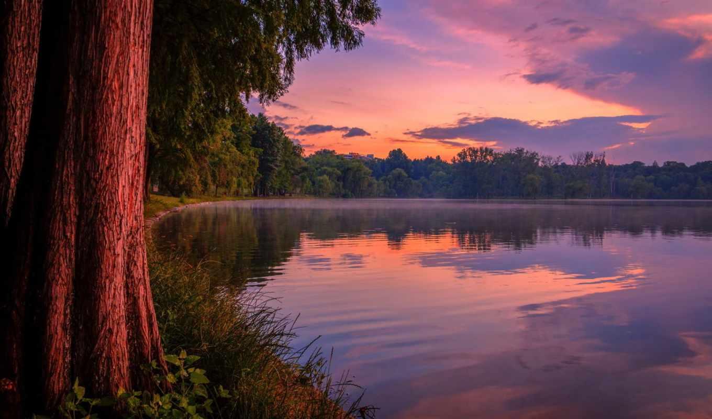 закат, озеро, небо, природа, парк, лес, пруд, отдых,