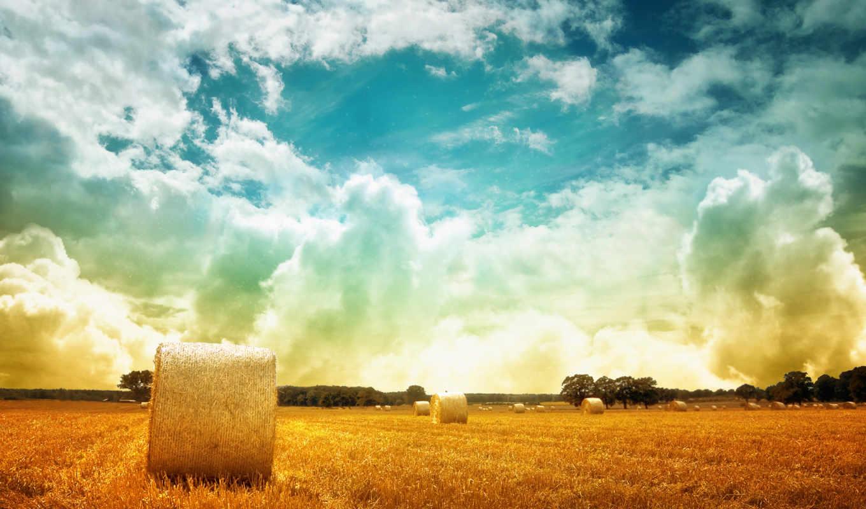 field, hay, разрешения, природа, высокого, gb, over, bales,