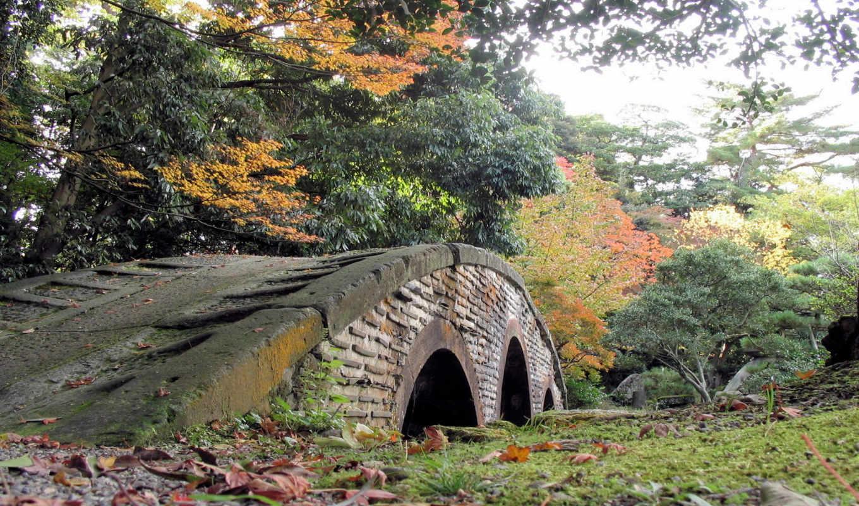autumn, pretty, сборник, мост, очаровательных, природы, background, this,