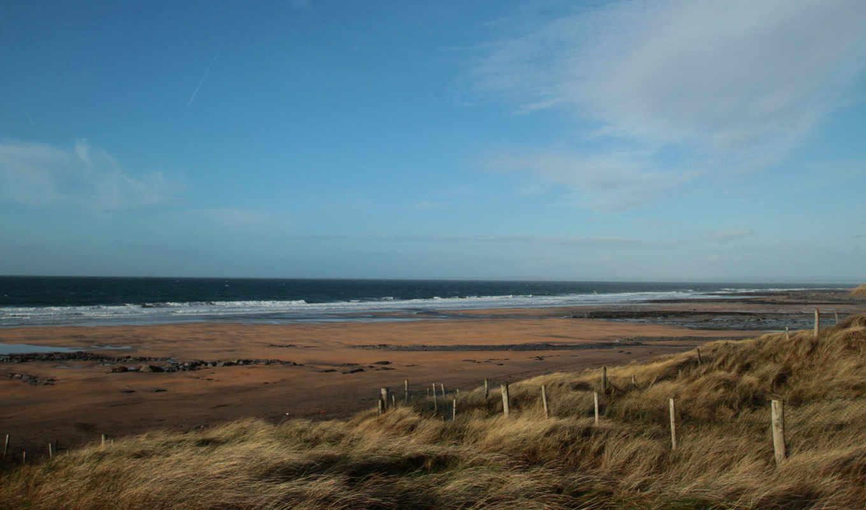 ветер, море, трава, пляж,