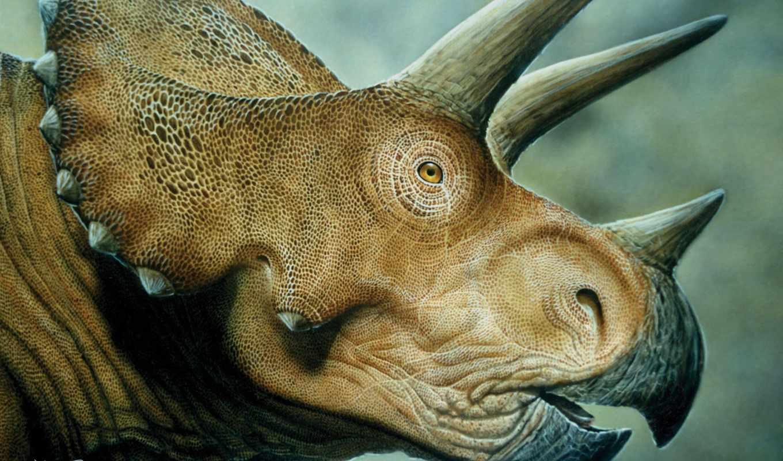 динозавр, динозавров, horned, динозавры, трицератопсы, отзывов, zhivotnye, динозавра, нояб, трицератопс,