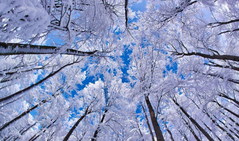 winter, пейзажи -, зимние, красивые, вк, зимняя, зиму, красивых,