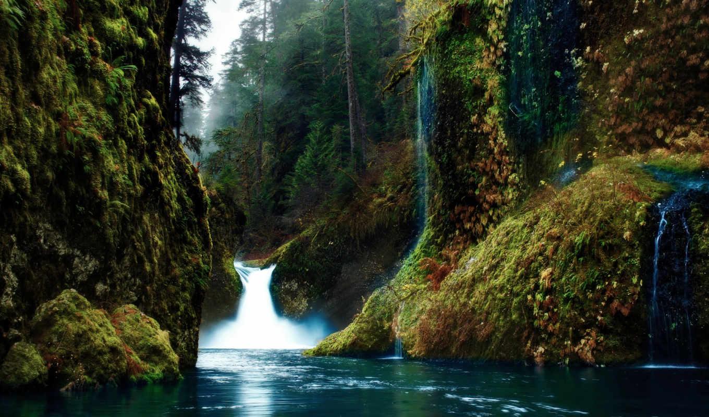 природа, водопад, лес, река,