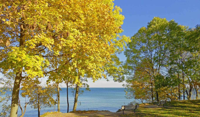 канада, preview, montreal, осень, поляна, quebec, benches, горы, landscape, телефон,