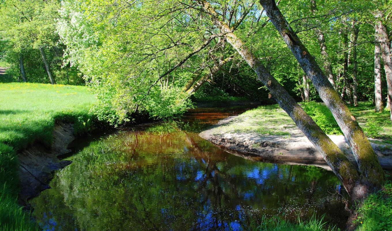 природа, реки, latvia, baltic, море, little, река,