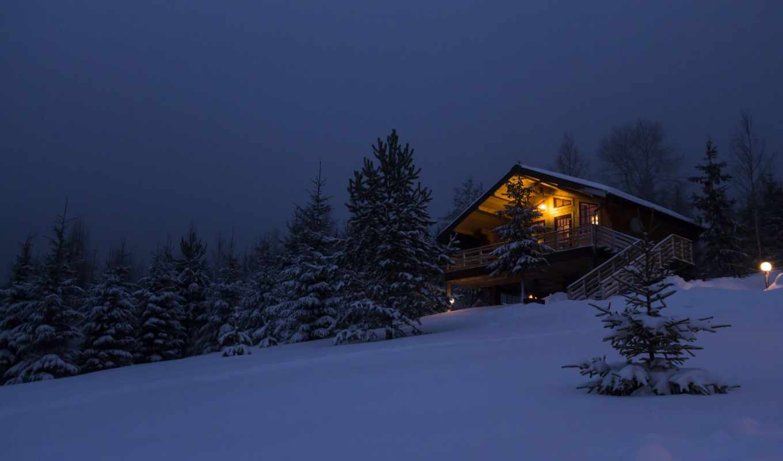 house, лесу, winter, лес, снег, год, new, коттедж, дерево, изба,