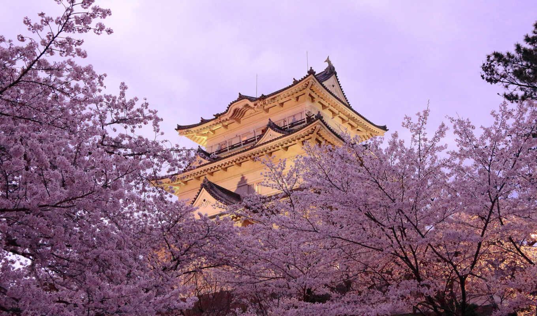 japanese, япония, весна, пагода