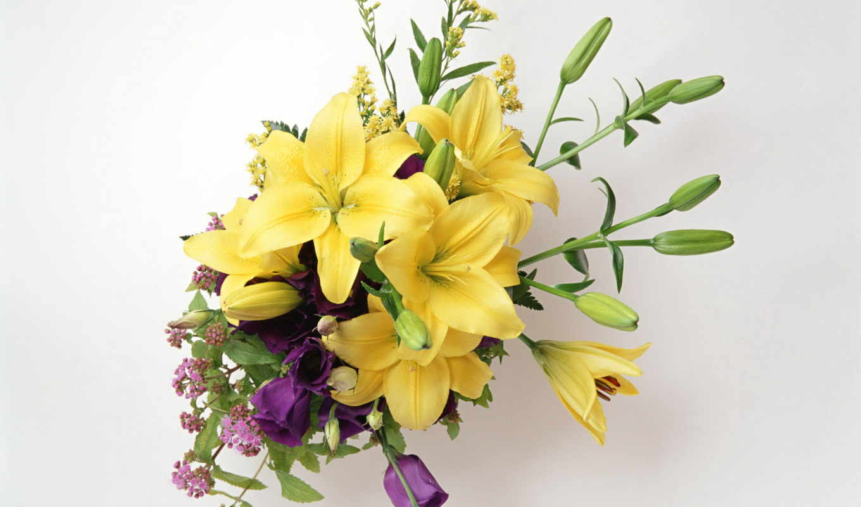 букеты, цветы, розы, лилии, букет,