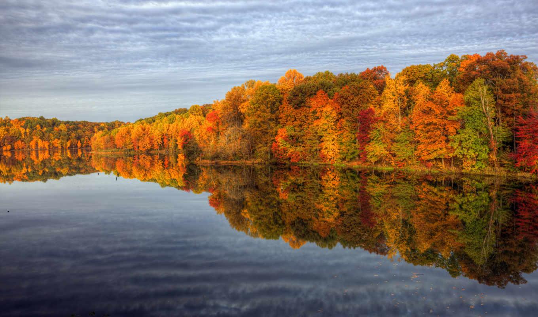 осень, природа, деревья, water, озеро, лес, отражение,
