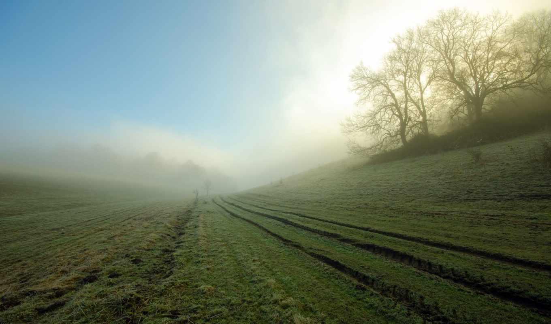 brouillard, parte, naturaleza, campo, foto, maastik, fonds, ecran,