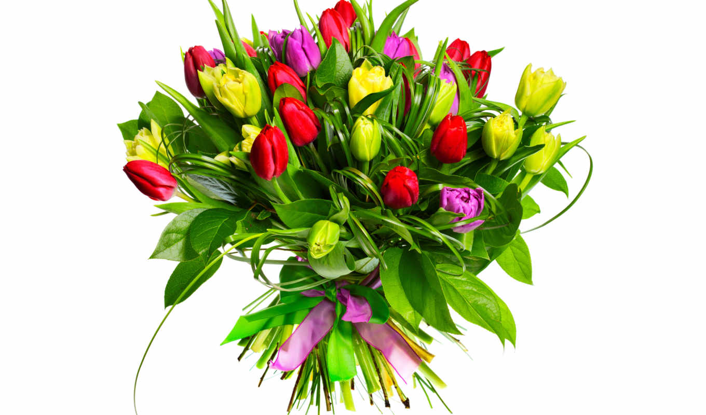 букет, тюльпанов, mix, яркий, весна, кольцах, берграсса,