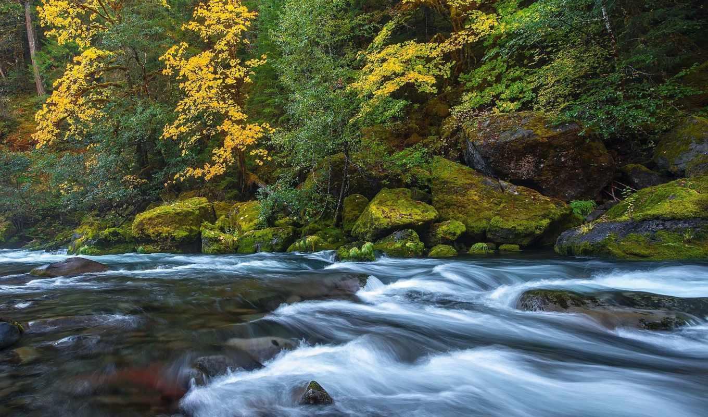 desktop, descarca, imaginea, gratuit, pentru, река, natural,
