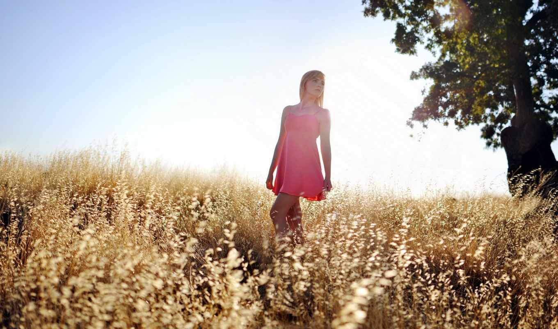 девушка, поле, summer, свет,